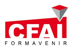 CFAI_fond_trans